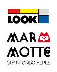looklogo1