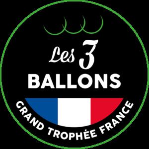 Logo 3 Ballons